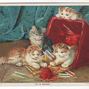 Kittens Playing among the Yarn and Thread Vintage Animals Postcard