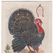 Wishbone Turkey Gobbler Pumpkin and Pumpkin Flower Vintage Thanksgiving Postcard