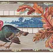 SOLD Oak Leaves Blue Country Scene Turkey Vintage Thanksgiving Postcard