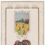 Wheat Field with Shocks Very Large Turkey Gobbler Vintage Thanksgiving Postcard