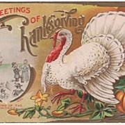 SOLD Landing of Puritans White Turkey Gobbler Pumpkin Vintage Thanksgiving Postcard - Red Tag