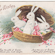 SOLD Signed Clapsaddle Three White Bunnies in a Covered Basket Vintage Easter Postcard - Red T