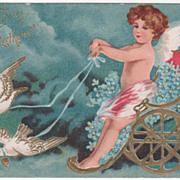 Lovebirds Pulling Cupid in His Cart Vintage Valentine Postcard