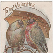 SOLD Two Robins on a Limb under an Umbrella Vintage Valentine Postcard