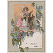 A D Sharpe Dry Goods and Carpets 30 Main St Jamestown NY Vintage Trade Card