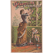 SOLD Grapoline or Grape Salt for Headache Geo W Barrell Albion NY Vintage Trade Card