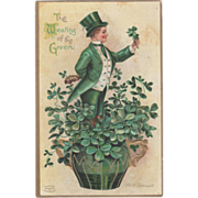 Signed Clapsaddle Man in Pot of Clover Vintage St Patrick's Day Postcard