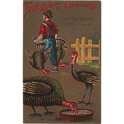 Farmer Carrying Two Turkeys from Feeding Pen Vintage Thanksgiving Postcard