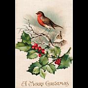 Silk Robin on a Limb Holly Sprig House in Background Vintage Christmas Postcard