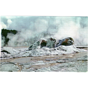 Grotto Geyser Cone Yellowstone National Park WY Wyoming Vintage Postcard