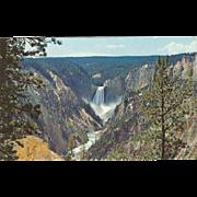 Grand Canyon Yellowstone Yellowstone National Park WY Wyoming Vintage Postcard