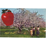 Apple Land VA Virginia Vintage Postcard