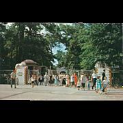 SOLD Entrance to Memphis Zoo Overton Park Memphis TN Tennessee Vintage Postcard