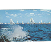 Sailboat Racing on Long Island NY New York Vintage Postcard