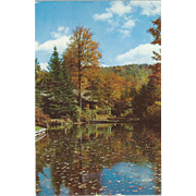 New York State Conservation School Narrowsburg NY New York Vintage Postcard