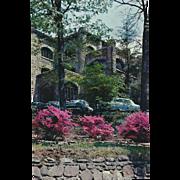 Springtime South Presbyterian Mecca Montreat NC North Carolina Vintage Postcard