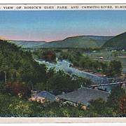 Rorick's Glen Park Elmira New York NY Postcard