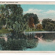 A Beauty Spot Lake Greenwood New York NY Postcard