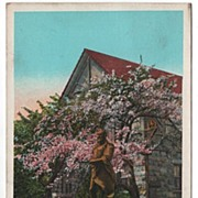 Michael Angelo Statue East Aurora New York NY Postcard