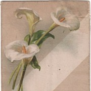 SOLD Silk Postcard A Merry Christmas White Calla Lilies Undivided Back - Red Tag Sale Item