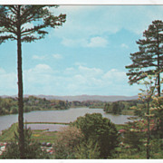 Beaver Lake Asheville NC North Carolina Vintage Postcard