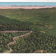 Craggy Gardens Highway near Asheville NC North Carolina Vintage Postcard