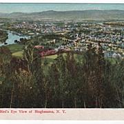 Bird's Eye View of Binghamton New York Postcard