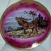 STW Bavaria Germany Elk Plate