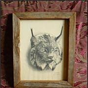 Bobcat Print Al J Casson signed