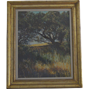 California hillside landscape pastel painting by Kitty Wallis