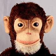 Rare Early Design (Button on BACK of ear) Steiff Jocko Chimpanzee (NOT MONKEY) Hand Puppet IDs