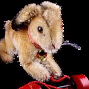 Rare '50s/'60s Steiff Pull Toy Hase Rabbit Bunny on Wooden Wheels ID