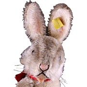 Middle Brother Rare Earliest Post WWII Model Steiff 5xJointed Niki Rabbit Hase Bunny 2 IDs