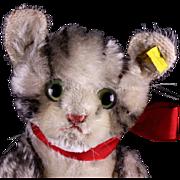 Rare Steiff Biggest Sister 5xJointed Kitten Cat Kitty 2 IDs '59-'64