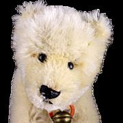 Rare Tiny Baby Brother Steiff Polar Bear Eisbaer ID