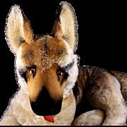 Rare BIG Brother (50 CM!) Steiff Reclining Arco German Shepherd Puppy Dog ID