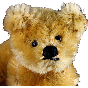 Early Post WWII Tiny Steiff 5xJointed Gold Blond Original Teddy Bear What an Expression!