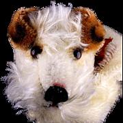 Gorgeous Steiff Foxy Fox Terrier Puppy Dog Hand Puppet All ID