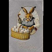 Excellent Antique Easter Postcard Grandma Bunny Rabbit & Basket of Eggs