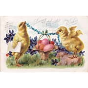 SOLD Antique C. 1908 Tuck's Baby Chicks Easter Postcard