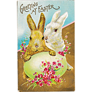 """Uncirculated Antique Stecher Easter Bunny Rabbits """"Greeting at Easter"""" Postcard"""