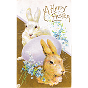 "Uncirculated Antique Stecher Bunny Rabbits ""Happy Easter"" Postcard"