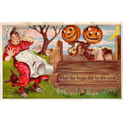 SALE Antique Julius Bien Halloween Postcard  980 Series; No. 9804