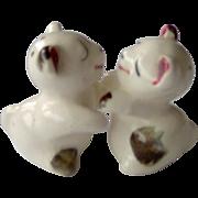 Hugging Kissing Bears Salt and Pepper Shakers