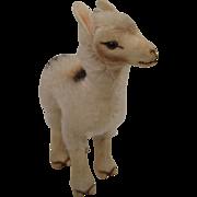 Steiff's Smallest Llama
