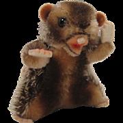 Steiff's Smallest Nagy Beaver