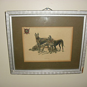 Early 1900's Advertising Print 4 Dobermans Titled Protection St. Joseph Mo.