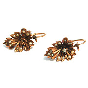 SOLD 14K Gold Victorian Lever Back Earrings With Seed Pearls
