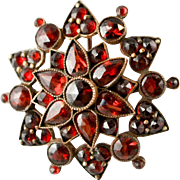 Beautiful Red Bohemian Garnets in Starburst Brooch