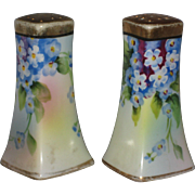 1950's Japan Salt and Pepper Shakers Hand Painted with Blue Forget-me-not Flowers